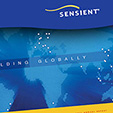 Sensient annual report